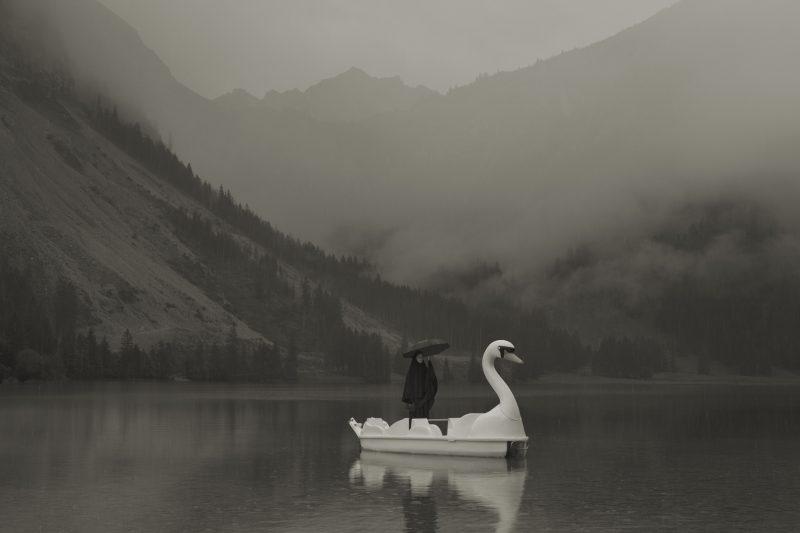 Het Parool | Im Wald: Erwin Olaf in de Alpen